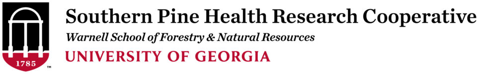 Southern Pine Health